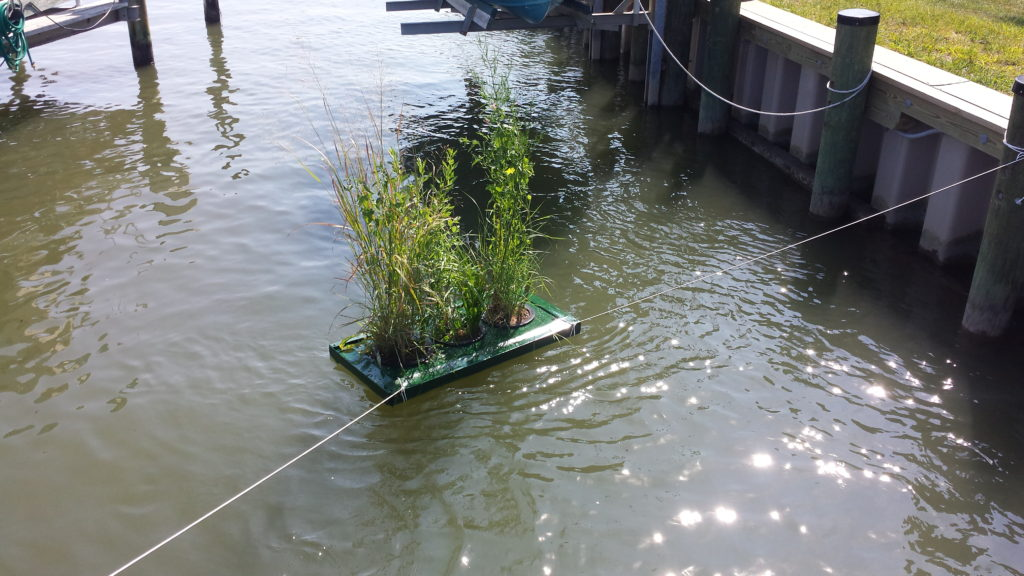 Floating Gardens in Arnold, MD